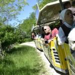 Poreč/Parenzana train